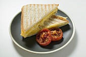 Toasted cheese sandwiches and grilled tomatoes on plate