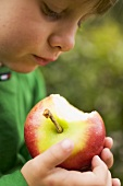 Child holding a Gala apple with a bite taken
