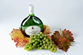 Bottle of white wine, green grapes, variety Silvaner, leaves