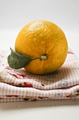Orange with leaf on cloth
