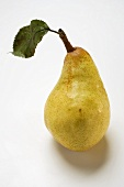 Williams pear with leaf