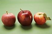 Three red apples, varieties Stark and Elstar
