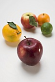 Apples and citrus fruit
