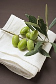 Olive sprig with green olives on linen cloth