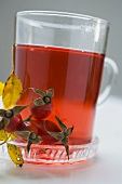 Rose hip tea in glass cup, fresh rose hips beside it