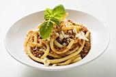 Macaroni with mince sauce, Parmesan and basil