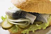 Herring, onions & gherkins in bread roll (close-up)