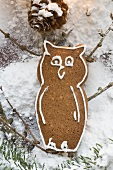 Gingerbread owl
