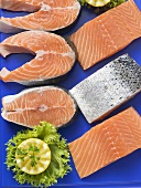 Fresh salmon fillets and salmon cutlets (overhead view)