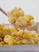 Macaroni cheese, some on spoon