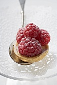 Raspberry tart on spoon