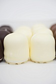 White and dark chocolate-covered marshmallow wafers