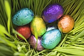 Chocolate eggs, wrapped in coloured foil, in grass (close-up)