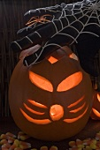 Halloween decorations: pumpkin lantern, cobweb glove, spider