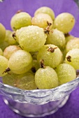 Gooseberries with drops of water in glass
