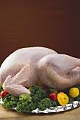 Fresh turkey garnished with vegetables on platter