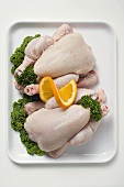 Two fresh chickens garnished with parsley and orange