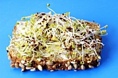 Sprouts on buttered whole-grain bread