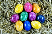 Coloured Easter eggs in straw