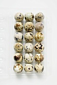 Quails' eggs in opened pack