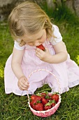 Small girl eating strawberries on grass