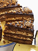 Mocha cake with quark filling, partly sliced