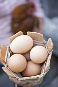 Woman holding basket of eggs and live hen