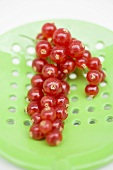 Redcurrants on slotted spoon