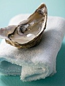 Fresh oyster with pearl on towels