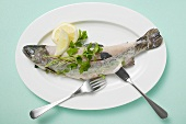 Trout with parsley, lemon and fish knife and fork on plate