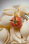 Pasta shells with cherry tomato