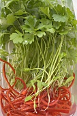 Fresh parsley and strips of red pepper