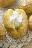 Baked Potatoes mit saurer Sahne auf Salz