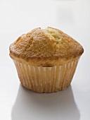 Lemon muffin in paper case