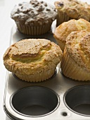 Assorted muffins in muffin tin