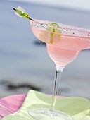 Pink cocktail in glass with sugared rim