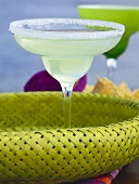 Margarita in glass with salted rim (Mexico)