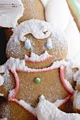 Gingerbread man with icing sugar (close-up)