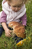 Small girl holding large cep in grass