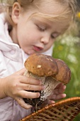 Small girl putting ceps into a basket
