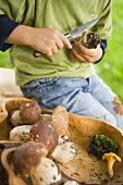 Boy cleaning ceps in a wood