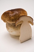 Whole cep and slice of cep