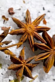 Star anise on coarse salt