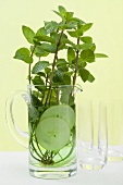 Mint sprigs & cucumber slices in jug of water in front of glasses