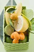 Citrus fruit and bananas in green basket