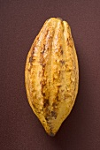 Cacao fruit on brown background