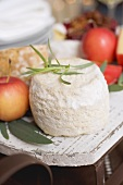 Goat's cheese and apples on small sleigh (Christmas)