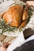 Woman garnishing roast turkey with herbs