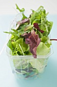 Mixed salad leaves in plastic container with fork