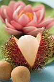 Rambutan (cut open), longans, water lily in background